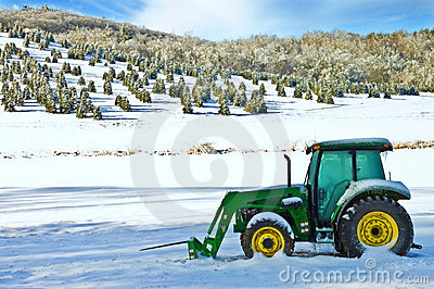Christmas Tree Farm and Tractor Editorial Photo