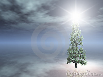Christmas Tree on foggy night