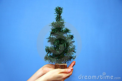 Christmas tree in hands