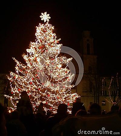 Free Christmas Tree In Night City Stock Image - 45341