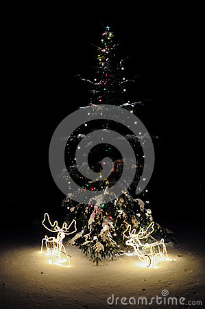 Christmas tree with lights and deers at night