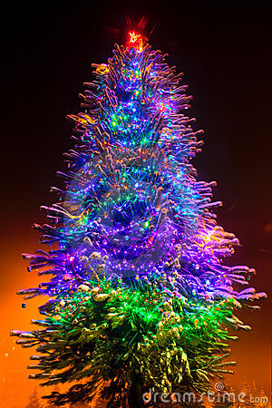 Christmas tree on the night