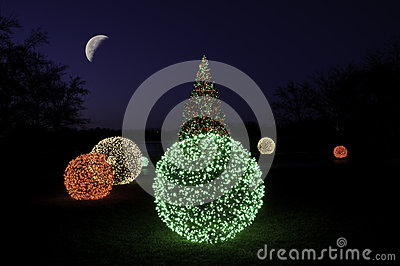 Christmas Tree at Night with the Moon