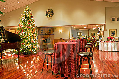 Christmas tree and party area