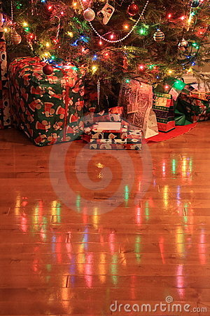 Christmas Tree Reflection