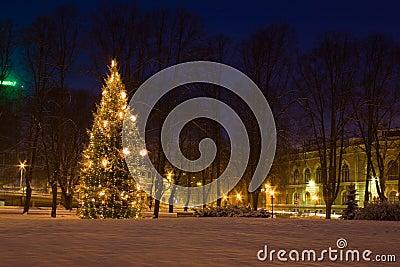 Christmas tree in Riga