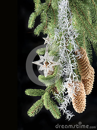 Christmas tree with shiny silver decoration