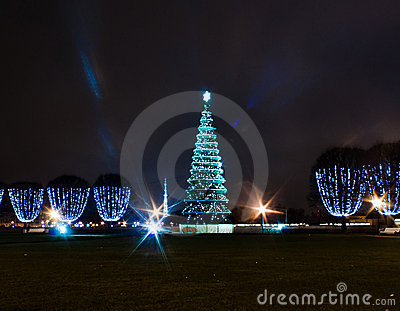 Christmas tree in square