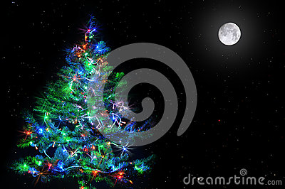 Christmas tree on star sky