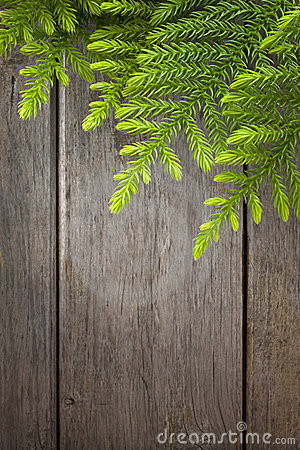 Free Christmas Tree Wood Background Stock Photos - 23937883