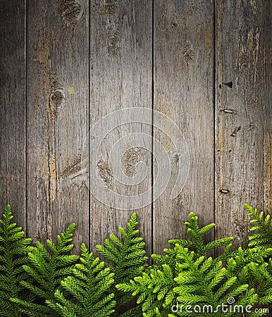 Free Christmas Tree Wood Background Stock Photos - 27830213