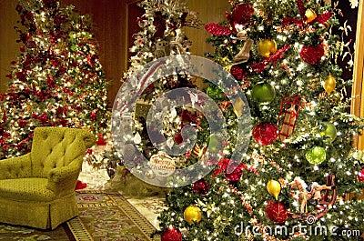 Christmas trees lights luxury hotel lobby