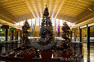 Christmas Trees in Shopping Mall