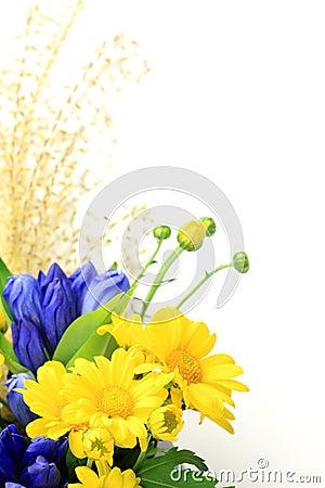 Free Chrysanthemum And Pampas Grass Stock Photo - 21109980
