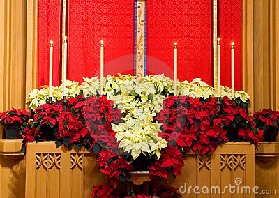 Church altar with poinsettias
