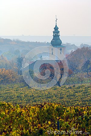 Church in autumnal vineyard