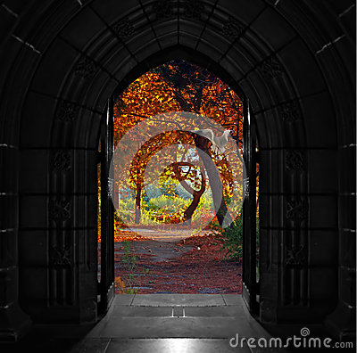 Free Church Doors Opening Out Onto Beautiful, Colorful Forest Stock Images - 47733964