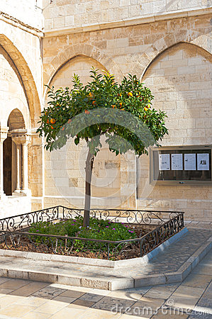 Free Church Of The Nativity Royalty Free Stock Images - 52424169