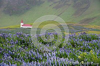 Church in Vik, Iceland