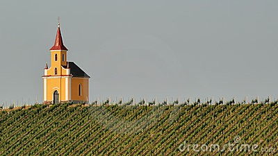 Church in vineyard no.2