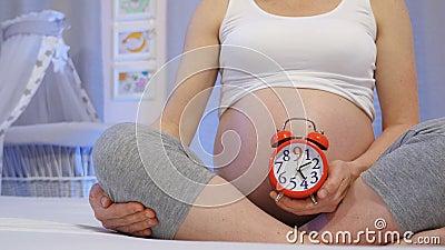 Ciało kobiece i dziewięć miesięcy ciąży zbiory wideo