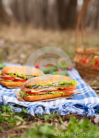 Free Ciabatta Bread Sandwich Lifestyle Picnic Meal With Bacon Royalty Free Stock Photo - 70077985