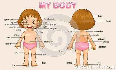 Ciało mój