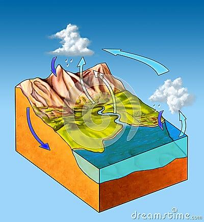Ciclo dell acqua