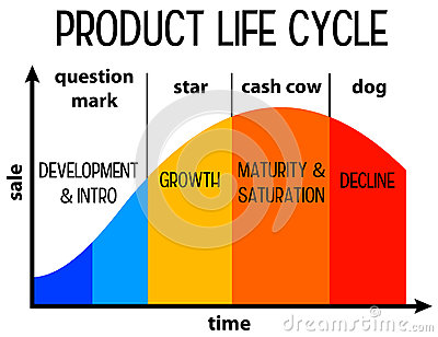 Credit life cycle