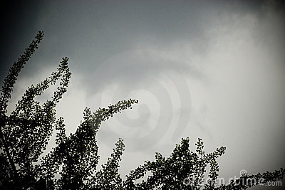 Cielo de la tormenta