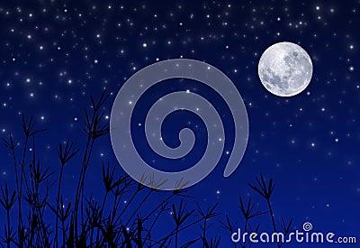 Cielo nocturno con las estrellas y la luna