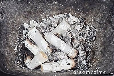 Cigarette-ends