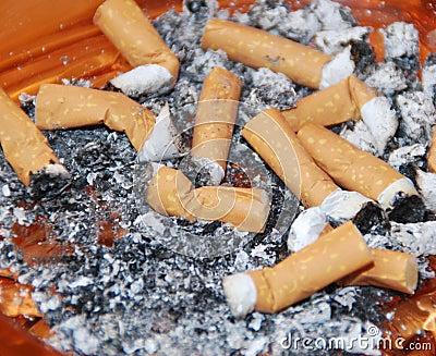 Cigarettes stubs