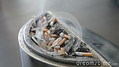 Cigarro em um cinzeiro vídeos de arquivo