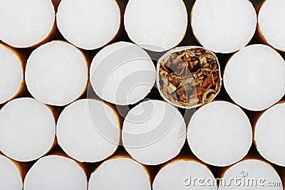 Cigarro sem filtro
