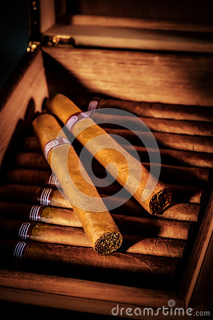 Free Cigars In Humidor Royalty Free Stock Photos - 26526838