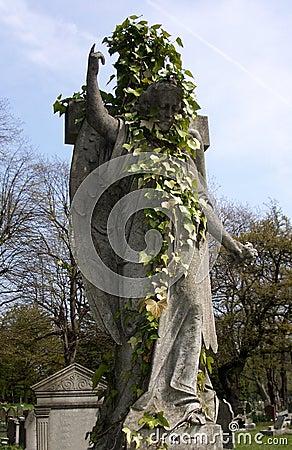 Cimitero 16