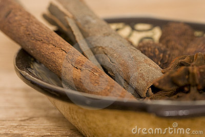 Cinnamon close-up