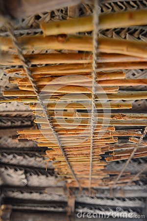Free Cinnamon Sticks Drying. Madu Ganga Wetlands. Balapitiya. Sri Lanka Stock Images - 93399154