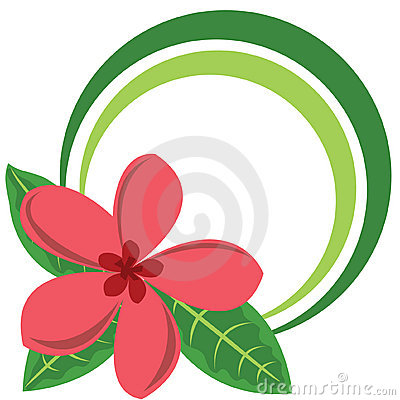 Circle color frame with big tropical flower