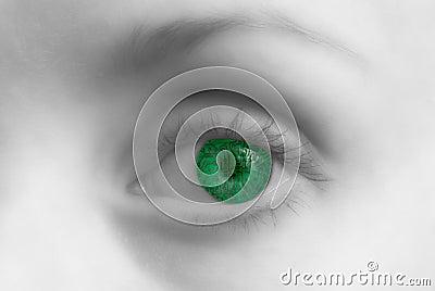 Circuit eye