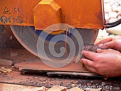 The circular saw