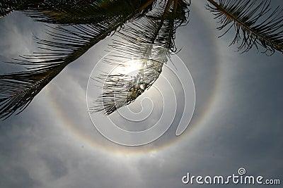 Circular solar halo