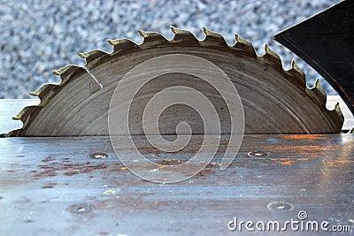 Circular table saw