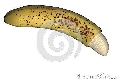 polish circumcised