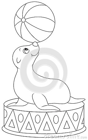 Circus seal equilibrist stock images image 37666894 for Circus seal coloring page