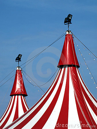 Circus in town!