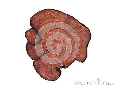 Cirlce wooden board
