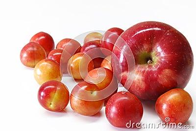 Ciruelos de cereza con la manzana