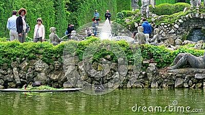 Cisne preta na lagoa do jardim de Valsanzibio - montes Colli Euganei Padua de Euganean, Itália video estoque